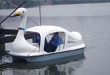 天鹅脚踏船